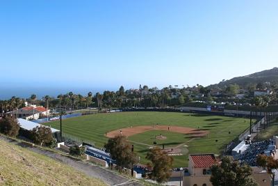 Любимый американцами бейсбол занимает ведущее место среди спортивных направлений.
