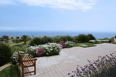 В целом на территории университета много красивых мест с видом на океан, где можно почитать книгу или просто посидеть, наслаждаясь перспективами.